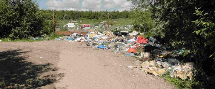 Wolał mandat o wysokości 500 złotych niż wywieść śmieci! Absurdalnie niskie kary za spalanie odpadów?