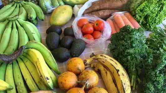 Dla kogo nadaje się tak zwana dieta optymalna? Poznajmy ją!