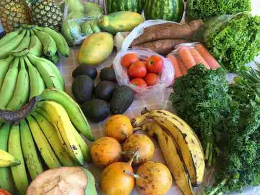 Dla kogo nadaje się tak zwana dieta optymalna Poznajmy ją